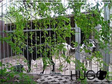 Venkovní kotec